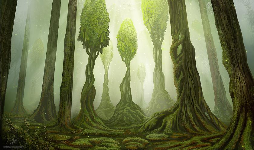 Un arbre pour trois vies